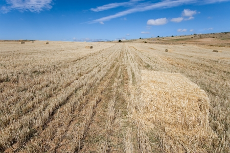 Bales of wheat, Sepulveda, Segovia, Castilla y Leon, Spain Stock Photo - 17721804