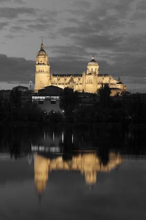 castilla y leon: Cathedral of Salamanca, Castilla y Leon, Spain