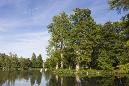 natural landscapes: Lake in the Castle of Chamarande, Essonne, France