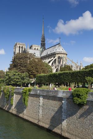 notre dame cathedral: Notre dame cathedral, Paris, ile-de-france, France