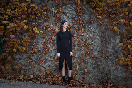 Beautiful young woman, model of fashion, on wall full of autumn leaves, with eyes closed. Fine art photograph Foto de archivo
