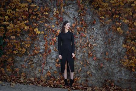 Mooie jonge vrouw, het model van de mode, op de muur vol van de herfst bladeren, met gesloten ogen. Fijne kunstfoto