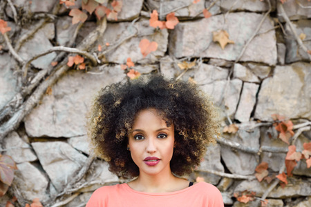 ethnic woman: Mixed woman with afro hairstyle standing in an urban park Stock Photo