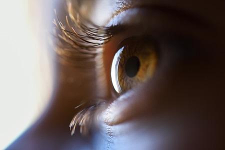 美しい小さな女の子茶色目のクローズ アップ。マクロ写真。