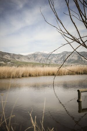 Wetlands with marsh vegetation in Padul, Granada, Andalusia 写真素材