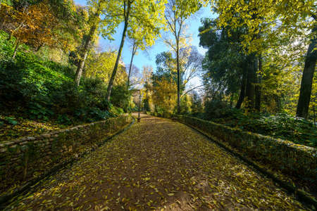 Cuesta de Gomerez in autumn this road takes you to the Alhambra complex Stock Photo