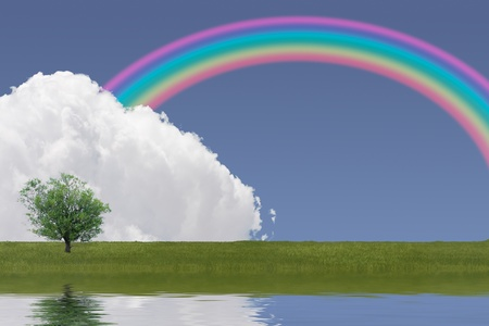 Cloud, grass and rainbow reflection Stock Photo - 11989319