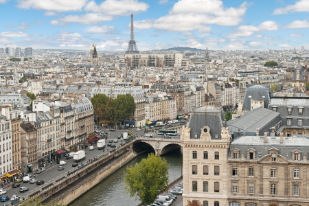 paris skyline: Panoramic view of Paris from the Notre Dame Cathedral in Paris, France