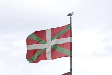 seabird: Basque country flag flying on the wind, with a sea gull standing on the pole.