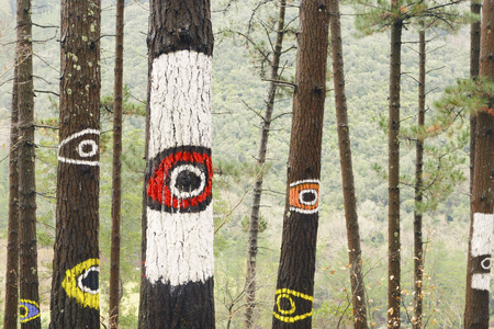 oma: Painted trees on the forest of Oma, Urdaibai Biosphere Reserve, Biscay, Spain.