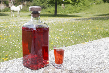 basque country: Bottle of Patxaran and a shot glass, outdoors. Patxaran is a sloe-flavoured liqueur drunk in the Basque Country and Spain. It is usually served as a digestif either chilled or on ice.