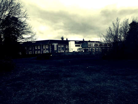 bedlam: The bethlam royal hospital also known as bedlam