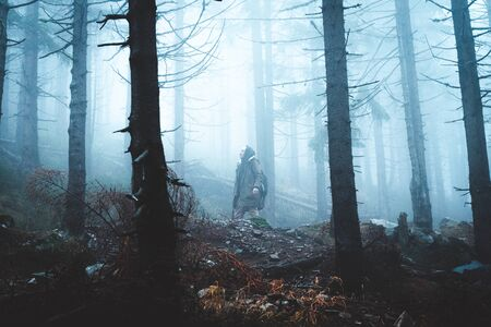 Magic and foggy morning spruce forest in Krkonose national park, Czech republic