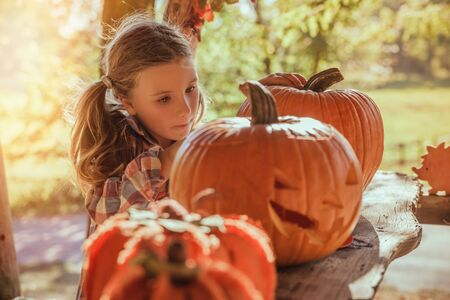 little girl preparing pumpkin for party 版權商用圖片 - 125523411