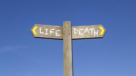 Life and Death - Concept