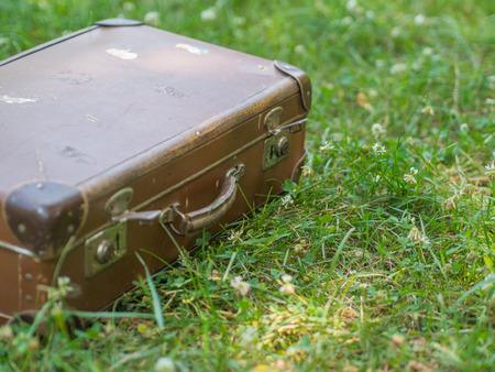 triplet: big brown travel bag