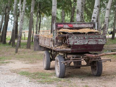 campesinas: Campesino carruaje tirado por caballos en el patio
