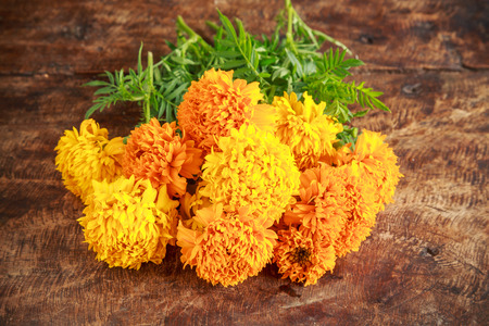 marigolds: marigolds bouquet on old wooden Stock Photo