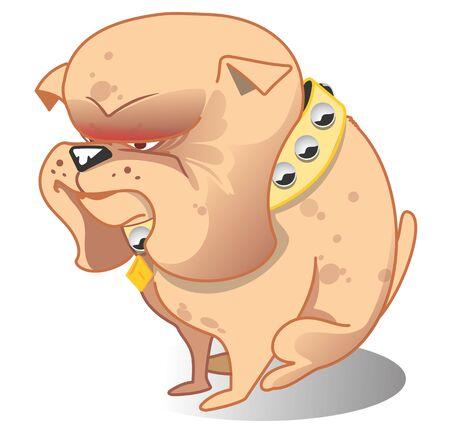 Funny and bad tempered bulldog, vector pet illustration. Security dog on guard. Banco de Imagens