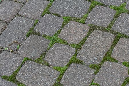 cobblestone patio with moss background
