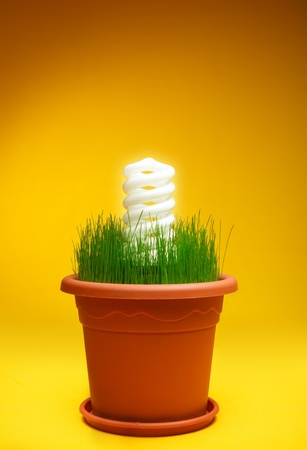 White eco spiral bulb light in a flower pot.Protect the nature and use eco energy.Yellow gradient background.Copy space on top for text. photo