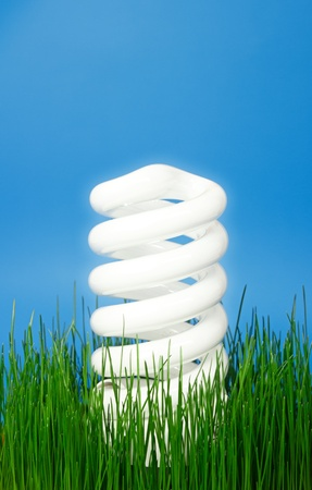 Bright eco light bulb rising above the green grass.Protect the nature and use eco energy.Blue background and copy space on top for own text. photo