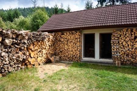 woodpile: Perspective view of dry firewoods well groomed in yard near a house.