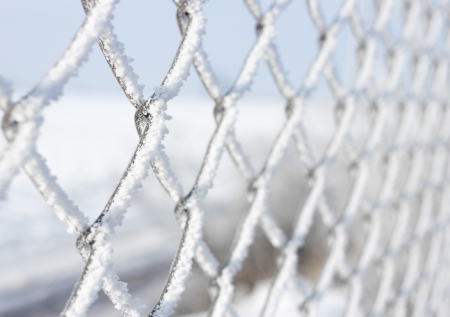Macro close-up of metal fence covered with frozen snow photo