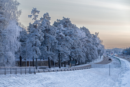Winter in Stockholm, Sweden with view of frosty trees and road Stock Photo