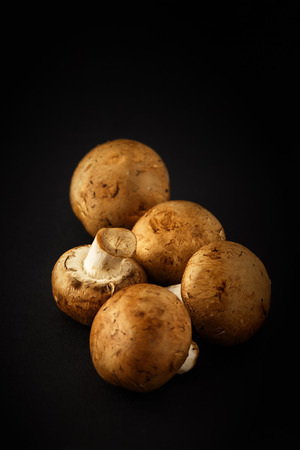 pinewood: Agaricus silvaticus also known as Scaly Wood Mushroom, Blushing Wood Mushroom, Pinewood Mushroom