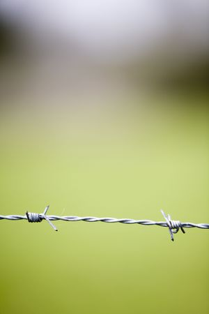 close up image of barbed wire with a green background showing nice shapes and colors Stock Photo - 907429