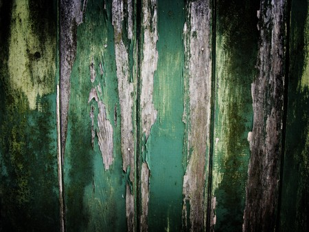 distressed wood: old worn down and peeling away green painted wooden fence panel