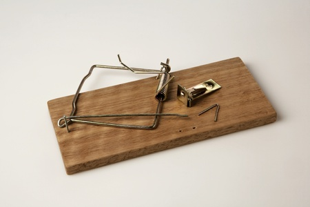 broken  mouse trap on white background photo