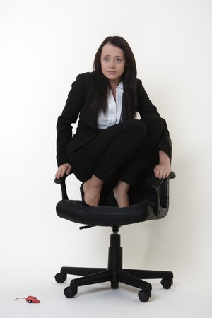 crouched: business woman who doesnt like mice crouched on an office chair  as a toy mouse runs around on the floor Stock Photo