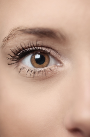 brown eyes: de cerca la imagen de un ojo womans