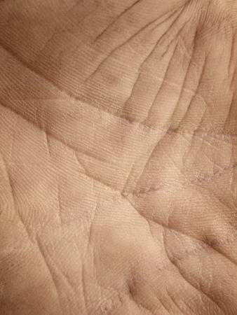 Fondo de la piel humana (mano)