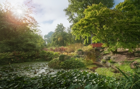glistening: View of lily pond in the Cotswold on a summers afternoon in England Stock Photo