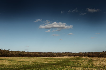 pictoresque: nature scenery under sky, pictoresque landscape looking across to a forest in the distant Stock Photo