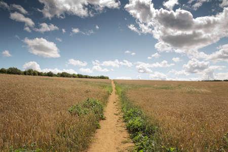 landscape image taken on the Adderbury circular walk in the Oxfordshire village of Adderbury, just south of Banbury in england
