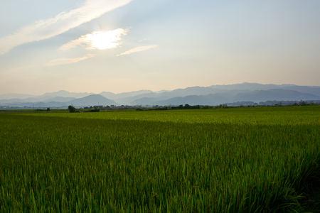 Landscape in Dien Bien Phu North Vietnam.