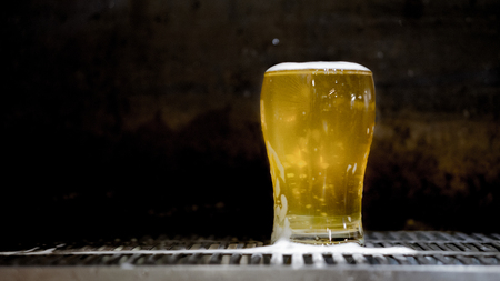 fresh craft beer from tap