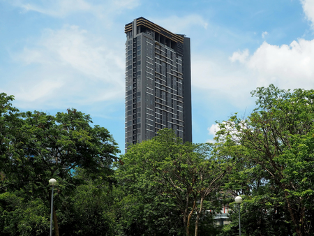 High-rise Building and a Clear Blue Sky Behind the Trees