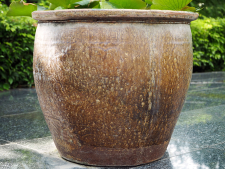 Vintage Clay Pot Isolated in the City Park