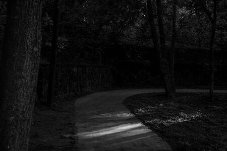 black and white path 스톡 콘텐츠