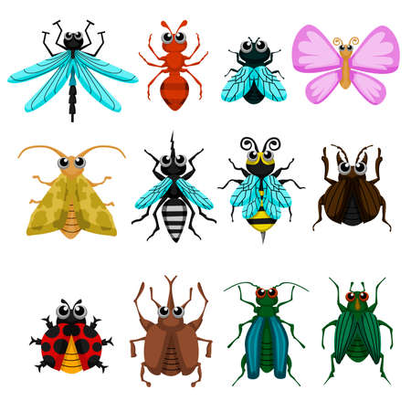 Bugs. Vector cute bugs and insects isolated on white background.  イラスト・ベクター素材