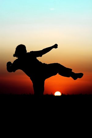 Silhouette of person performing martial arts in front of  beautiful sunset photo
