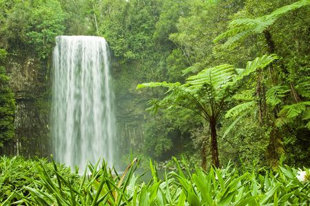 A cascading tropical waterfall in Milla Milla, Queensland, Australia photo