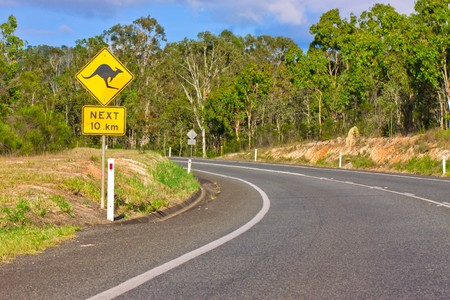 An Australian kangaroo warning sign on the side of a road photo