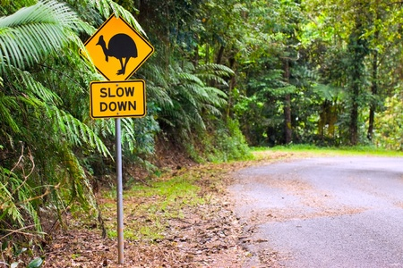 cassowary: A cassowary road warning sign in the rainforest of north Queensland, Australia Stock Photo