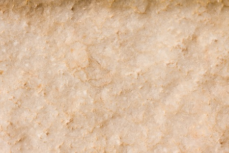 Closeup of a pale limestone rock. Perfect as an earthy background or texture. photo